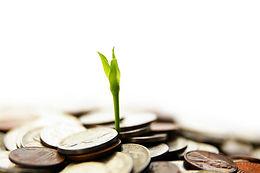 money-grow.jpg