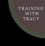 Tracy Corner Art.png