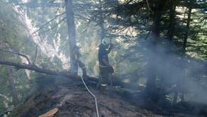 Blitzschlag löste Waldbrand aus. Feuerwehr und Bergrettung im Einsatz
