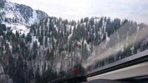 Wanderin aus steilem Waldgelände  gerettet.