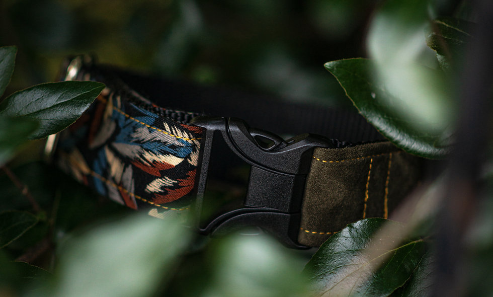 Dogwood Two Tone Collar