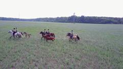 group-riding-horses-V4VQMV6.mov