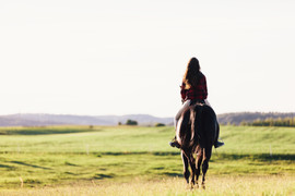 young-girl-sitting-on-a-bay-horse-riding