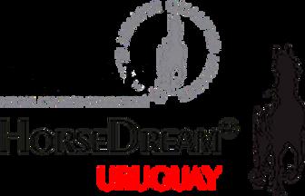 horsedream_eahae_transparent_uruguay.png