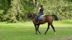 woman-riding-horse-through-field-JGKWGRT