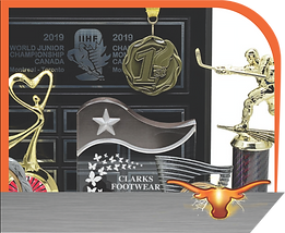 AWARDS ICON CROPPED.png