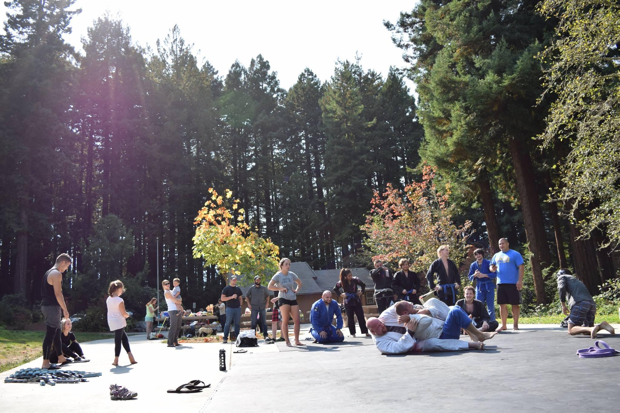 jiu jitsu redwoods 2