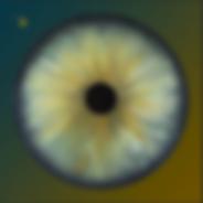 Châle  IRIS 120x120 Twill 70% Laine 30% Soie