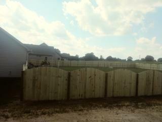 Arch Fence