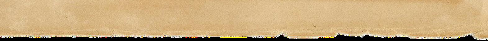 torn_paper_header_WEB.png