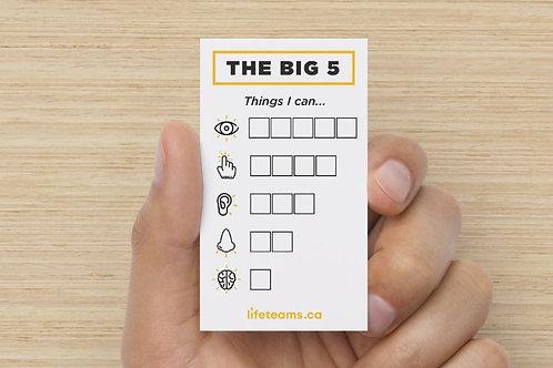 Big 5 Card