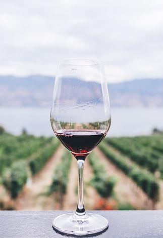 wine%20stock%20photo%202_edited.jpg
