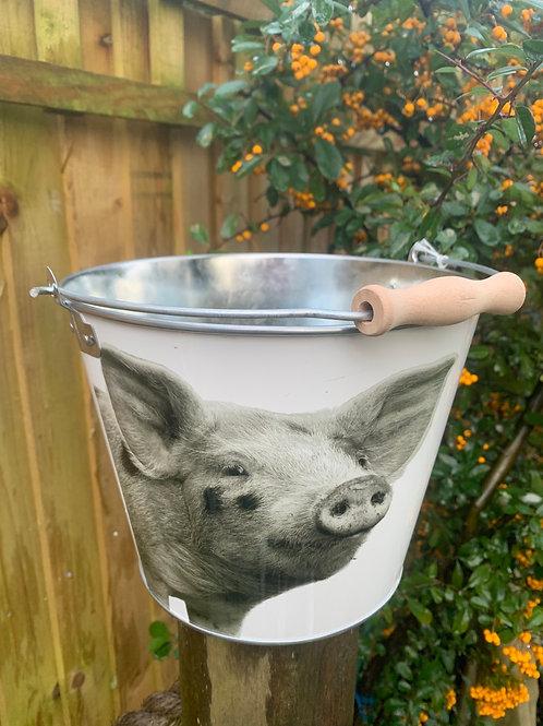 Black & white pig bucket