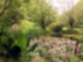 IMG_3406_edited_edited.jpg