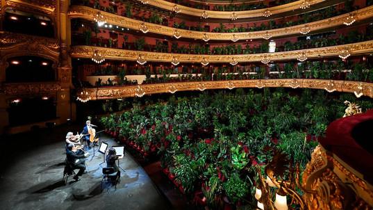 Concert voor 3000 planten
