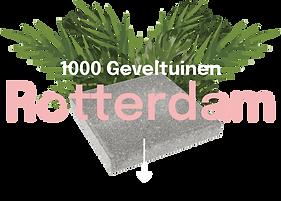 rotterdam1.png