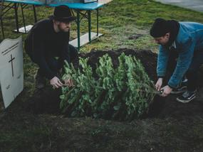 We organiseerden een kerstbomen begrafenis!