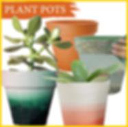 Plant pots.jpg