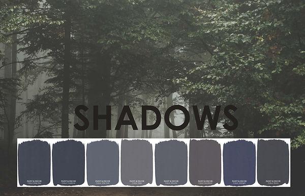 Shadows website cover.JPG