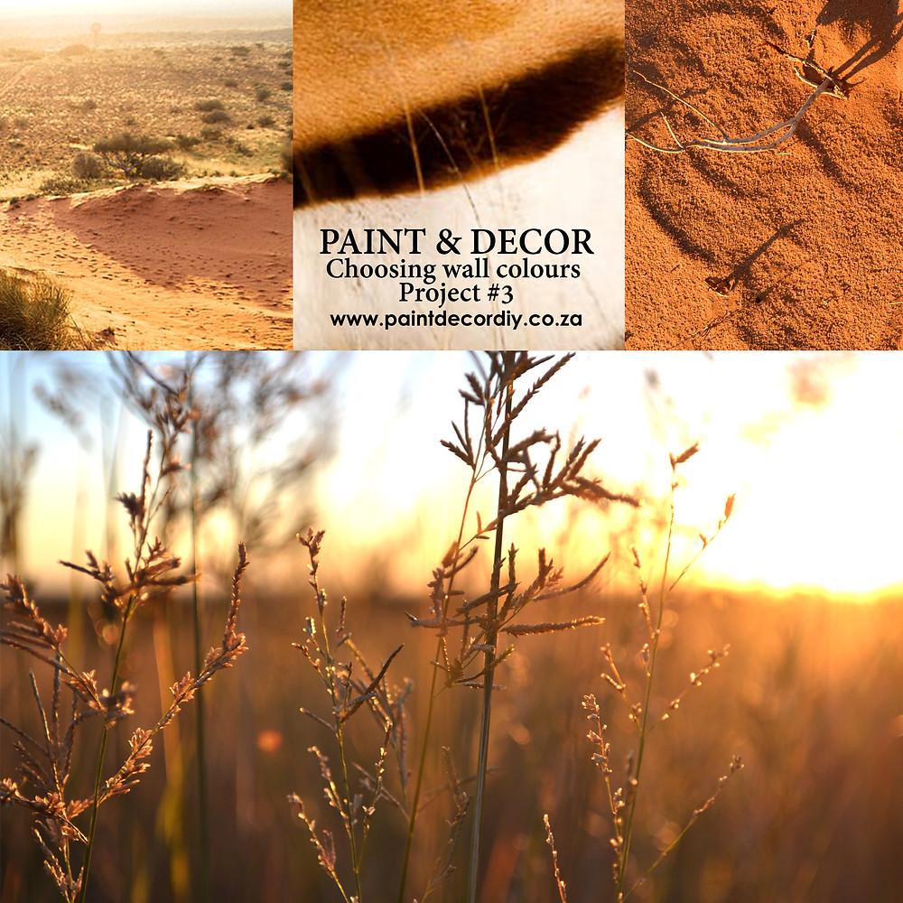 Inspiration from the Kalahari