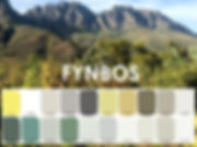 Fynbos website front cover.JPG
