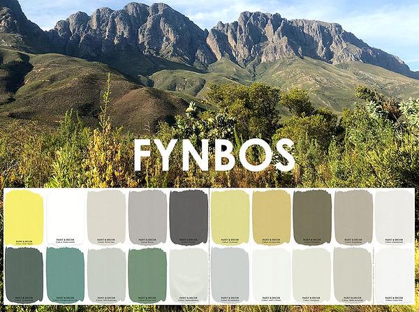 Fynbos website front cover.JPG