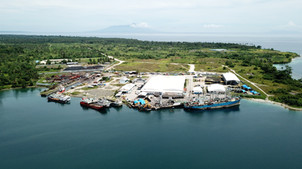Aerial view of the PMIZ site.JPG