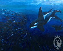 Orca Study - SOLD