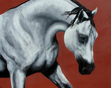 Arabian horse 24 x 30 - For Sale