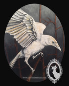 White Raven - For Sale