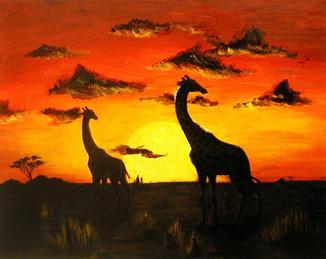 Giraffes - For Sale