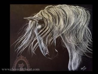 Horse Portrait 8.5 x 11 - For Sale