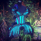 Butterfly costume - SOLD