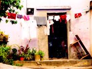 Nuestros Vecinos 1.jpg