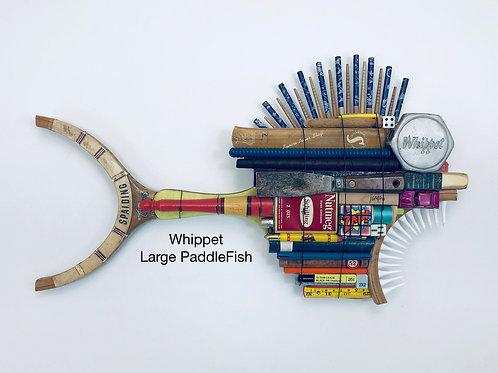 Whippet, Large PaddleFish
