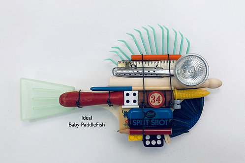 Ideal, Baby PaddleFish
