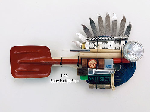 I-29, Baby PaddleFish