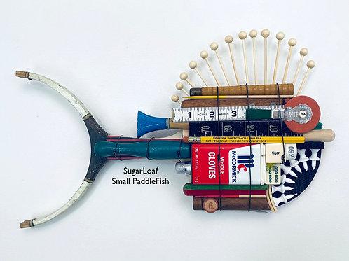 SugarLoaf, Small PaddleFish
