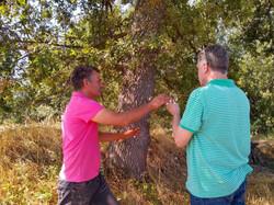 Avec les baguettes de sourcier, /Communication with nature