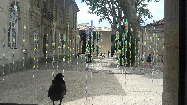 Avignon - Collection Lambert