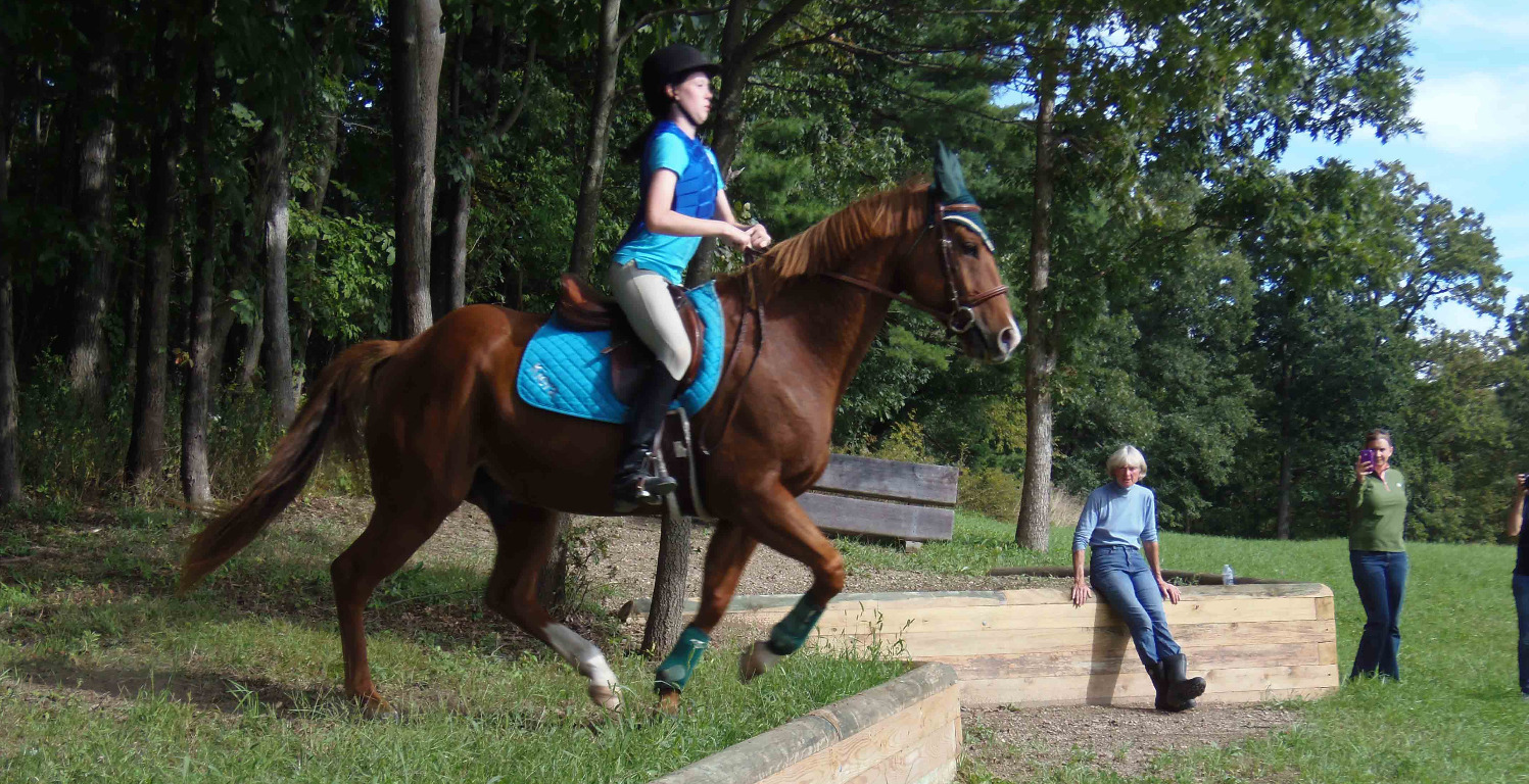 Pony Club clinic with Margie