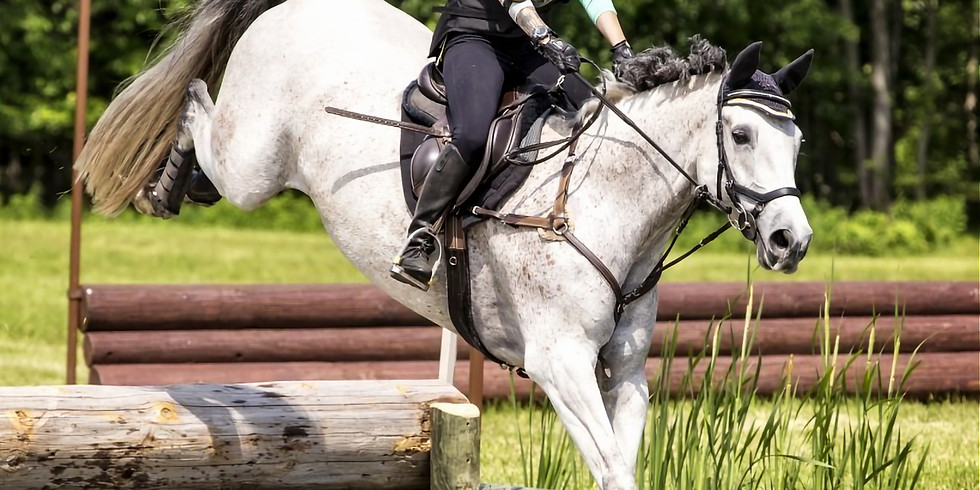 Larkin Hill Horse Trials Preliminary XC Course