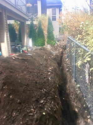 BEFORE: Backyard patio and garden