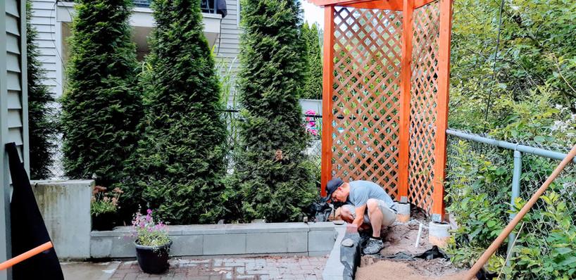 DURING: Backyard patio and garden