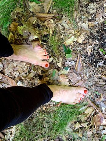 Barefoot walks - Forest Bathing