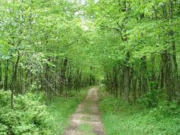 beautiful hikes