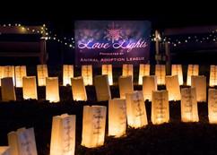 Love Lights Event - Animal Adoption League