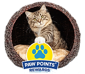Paw-Points_Fresh_Step.png