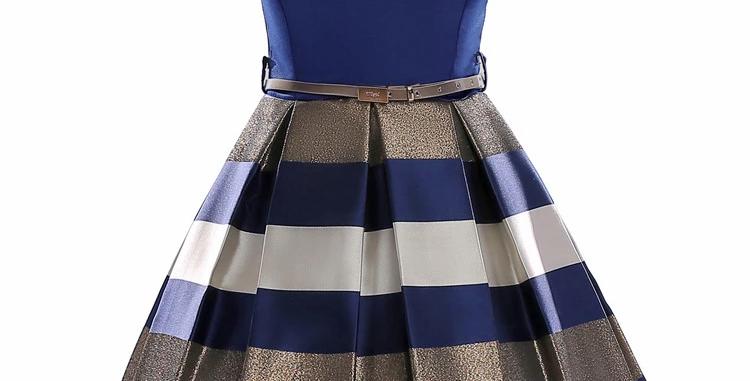 Twirl Pleated  Dress