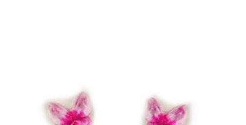 Sweet As Sugar Jewellery - Stud Butterfly Earrings